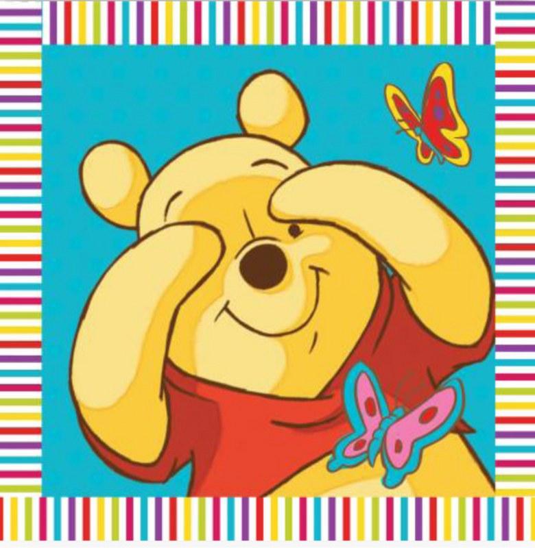 Λαβέτα-Μαγική Πετσέτα 30×30εκ. Digital Print Winnie 01 Disney Dimcol (Ύφασμα: Βαμβάκι 100%) – Disney – 2120512402000199